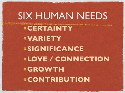 6 HUMAN NEEDS 500