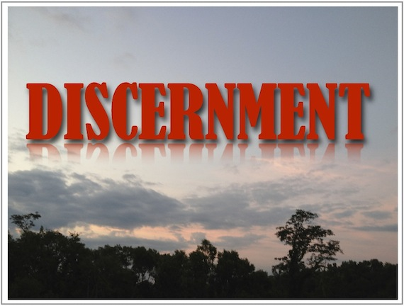 "Preview of ""discernment"""